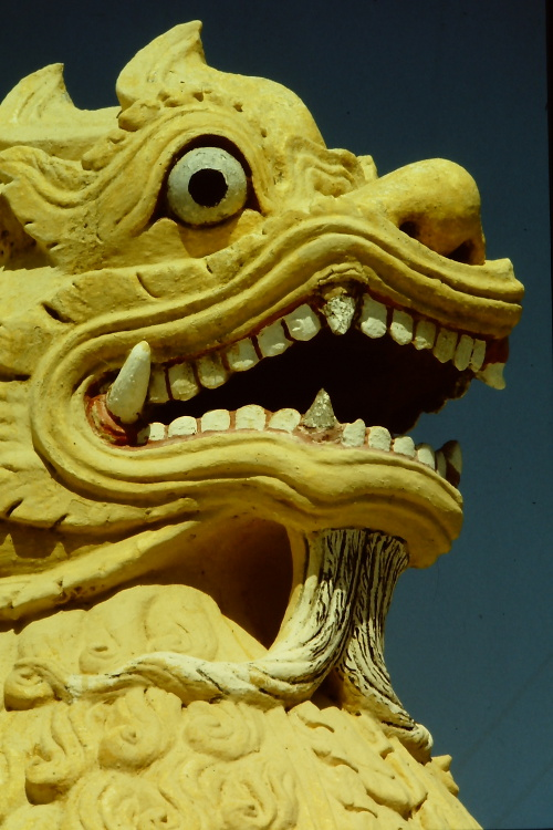 mandalay-yellow-lion-face