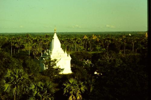 pagan-amidst-jungle