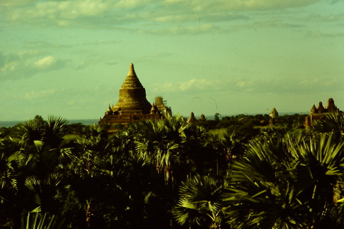 pagan-jungle-and-pagoda