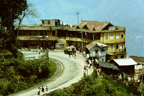 darjeeling-winding-road