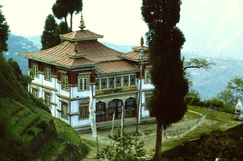tibetan-center-darjeeling
