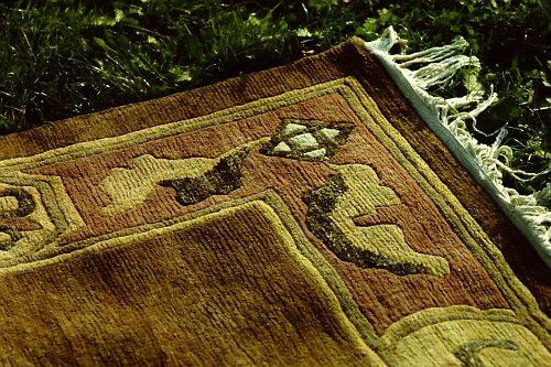 more-tibetan-vegetable-rugs-44