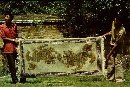 more-tibetan-vegetable-rugs-6