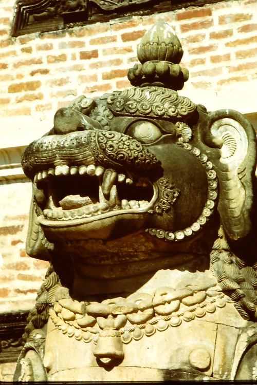 stone-lion-bhaktapur