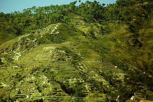 nepal-terrace-hills