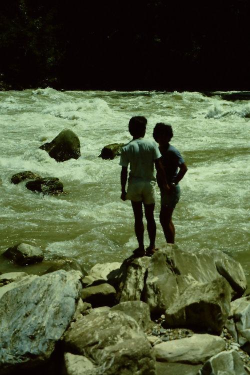 inspecting-rapids